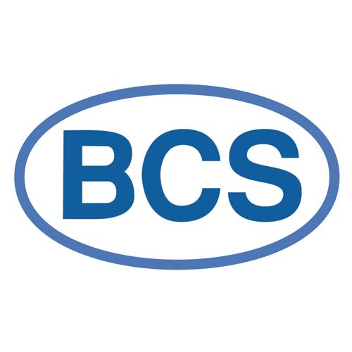 BCS Timisoara